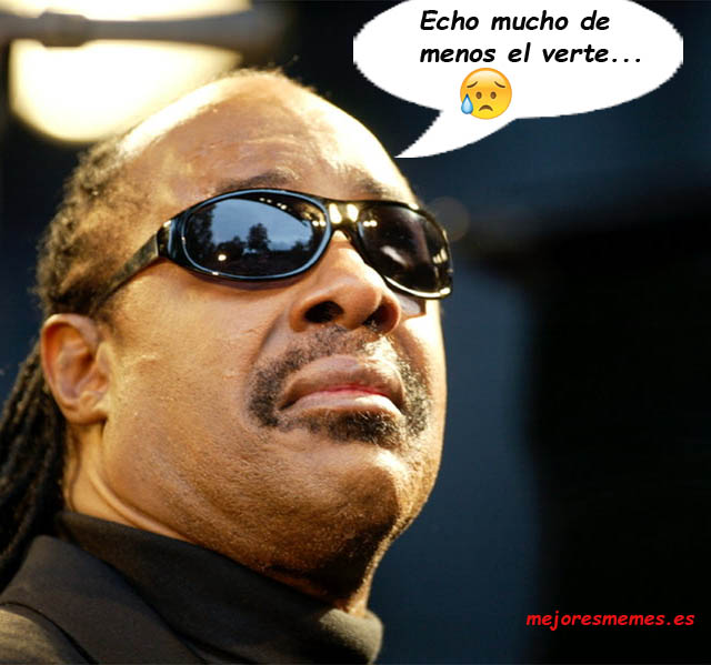 Stevie Wonder echo de menos verte