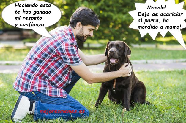 Deja de acariciar al perro