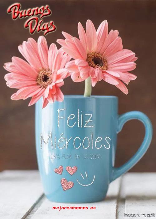 Buenos días miércoles taza y flores