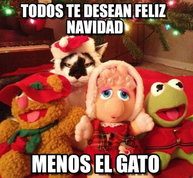 Todos te desean Feliz Navidad menos el gato